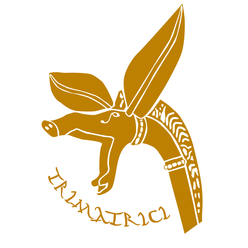 logo_trimatrici